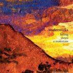 tindersticks_fallingdownamountain